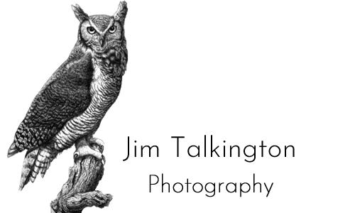 Jim Talkington Photography